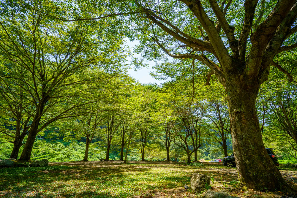 新平ヶ原公園