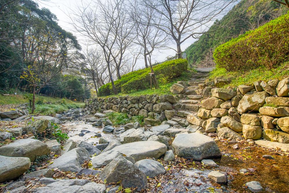 深坂自然の森 サイト側の小川
