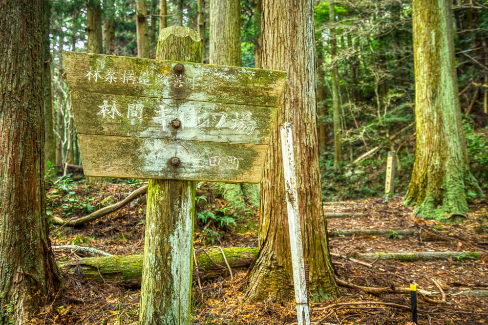 林間キャンプ場 看板