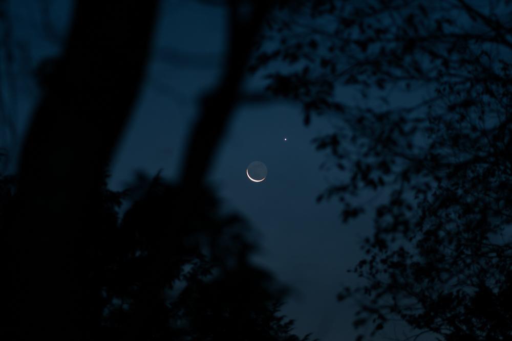 豊田湖畔公園 月