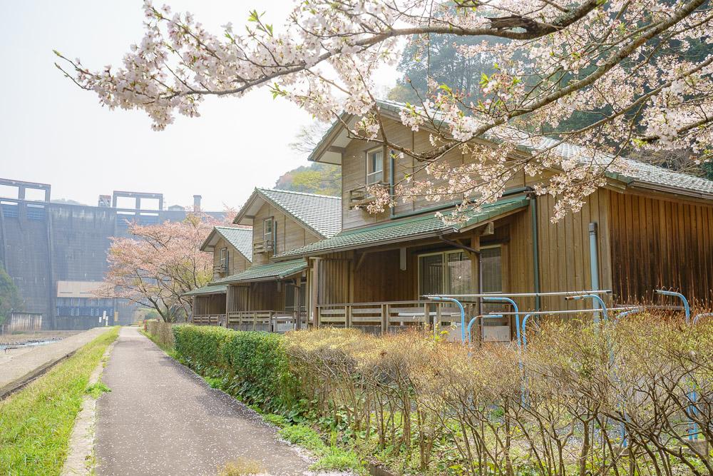 萩阿武川温泉公園 バンガロー