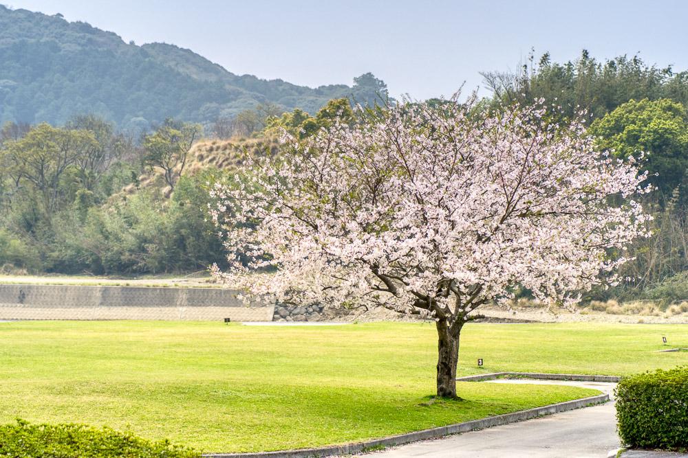 粟野川河川公園 3番サイト