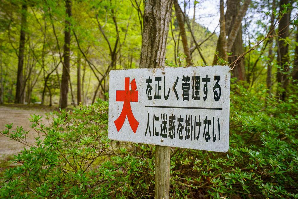 須川家族村オートキャンプ場 ペットも可能