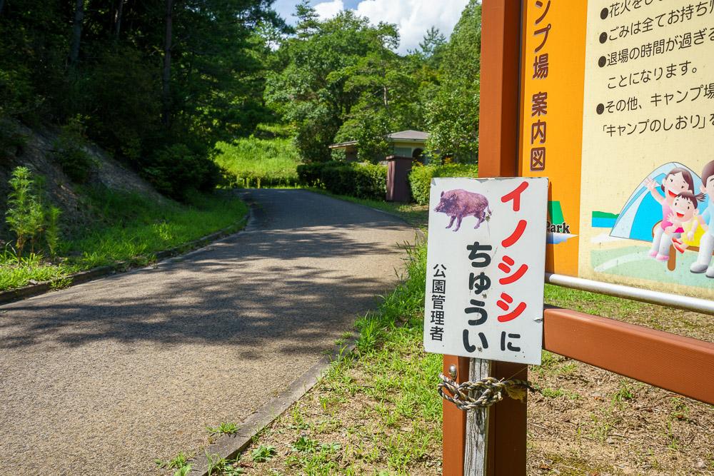 江汐公園キャンプ場 イノシシに注意